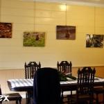 """""""Extrait de Nature"""" s'expose au Conservatoire Botanique National de Mascarin"""