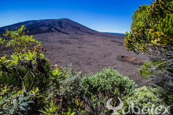 Au volcan de la Fournaise