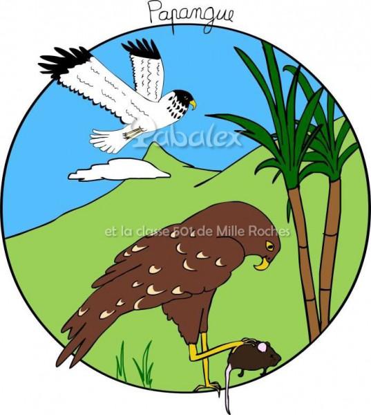 papangue - projet déclic et des clics ornithologiques