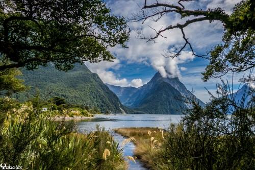 Milford Sound - Bienvenue au pays du long nuage blanc