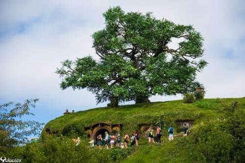 Hobbiton - Maison de Bilbo Baggins