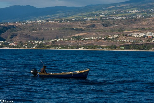 Yabalex_MG_7390 - barque de pêche