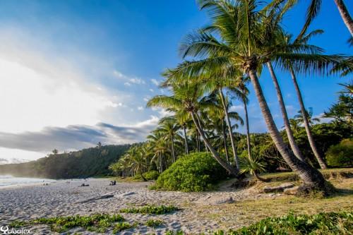 Yabalex_T3A5834 - plage de Grande Anse