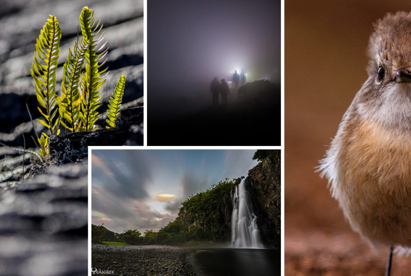 Atelier créativité photographique avec Yabalex
