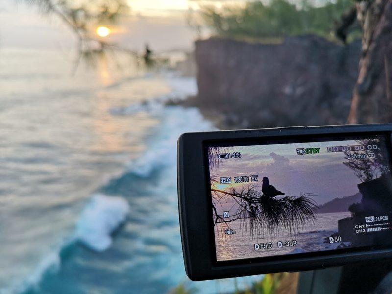 Reportage vidéo sur le macoua dans le sud de La Réunion