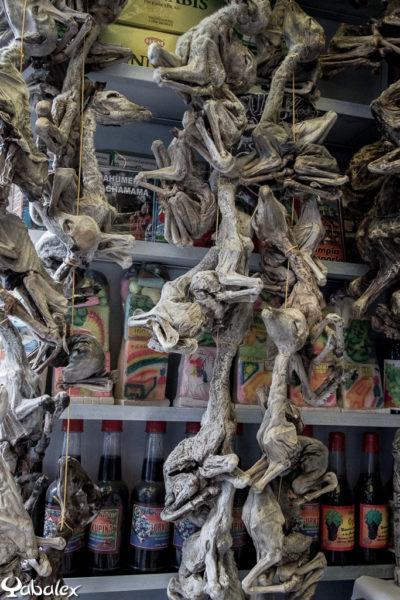 Le marché des sorcière à La Paz