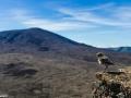Du bord de mer aux brandes des hauts de l'ile - ici au Volcan